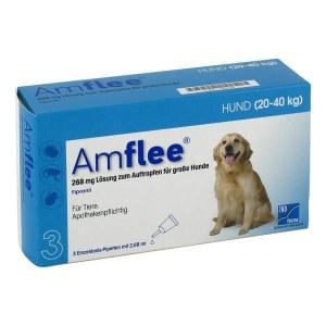 Amflee 268 mg Lösung zur, zum Auftropfen für grosse Hunde