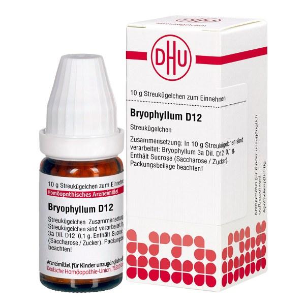 Bryophyllum D 12 Globuli